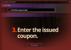Enter the issued coupon.